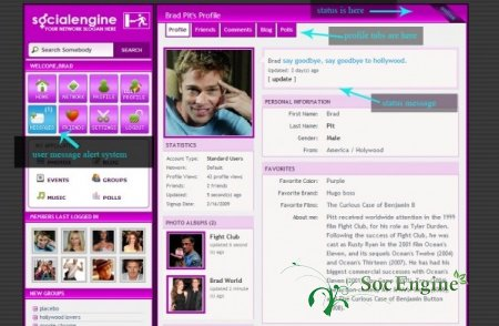 Set Purple Vip Template in GOLD Social Engine 3.17