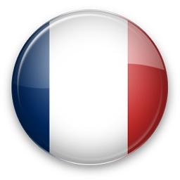 Une traduction intégrale en français Social Engine