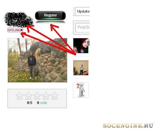 Widget profil status online