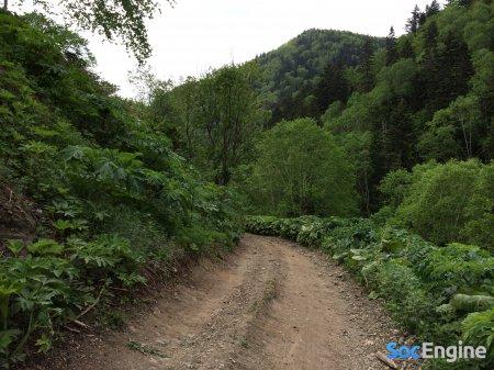 Недолгий подъем на перевал, где находится давно брошенная железнодорожная станция