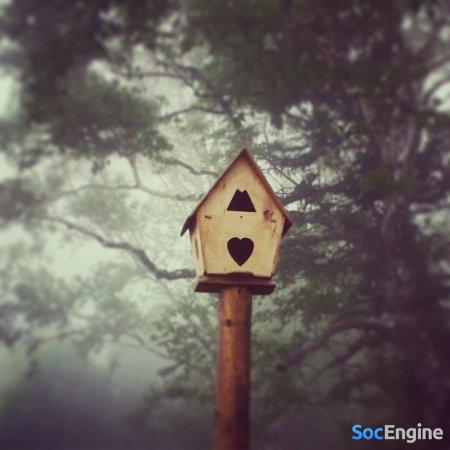 Элитное жилье для птиц