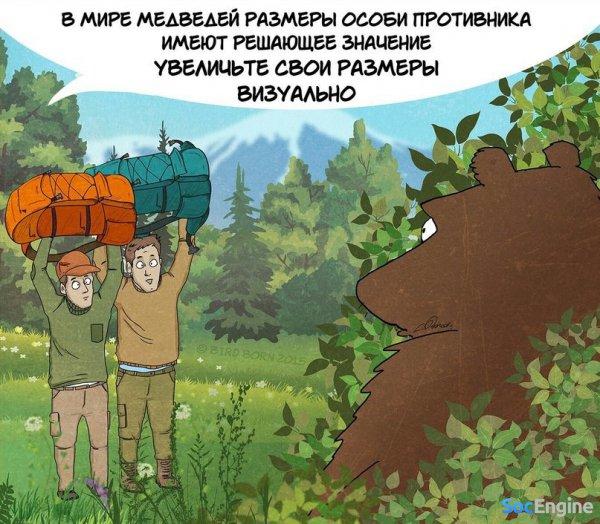Как быть, если встретил медведя